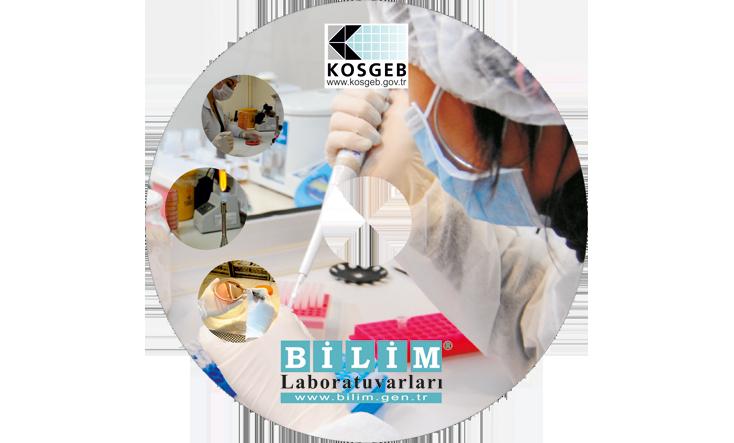 Bilim Labrotuvar CD Baskı